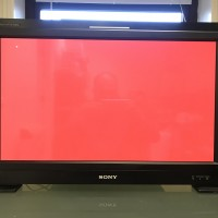 Sony BVM E250 OLED Monitor with Sony BKM 16R Remote Panel