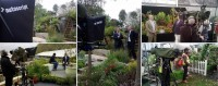 Autoscript prompters support broadcast coverage of the RHS Chelsea Flower Show