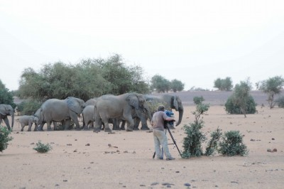 DP BOB POOLE CAPTURES DRAMATIC FOOTAGE IN AFRICA FOR GREAT MIGRATIONS WITH FUJINON HD LENSES