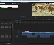 Marquis to Show New Avid Interplay Cross Platform Workflows at NAB