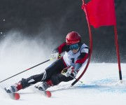 Media Links and VIDI Help Win Viewers for Winter Sports  in Germany