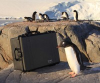 Peli Cases - Waterproof, Crushproof and now... Penguin Proof