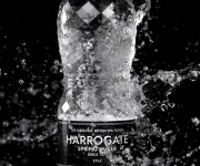 TWENTY TWENTY FILMS GEARS UP FOR ASCOT WITH HARROGATE SPRING WATER APPOINTMENT